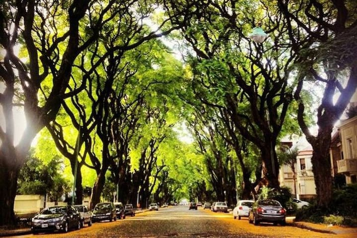 The FOREST BA, in the exclusive area of Belgrano R