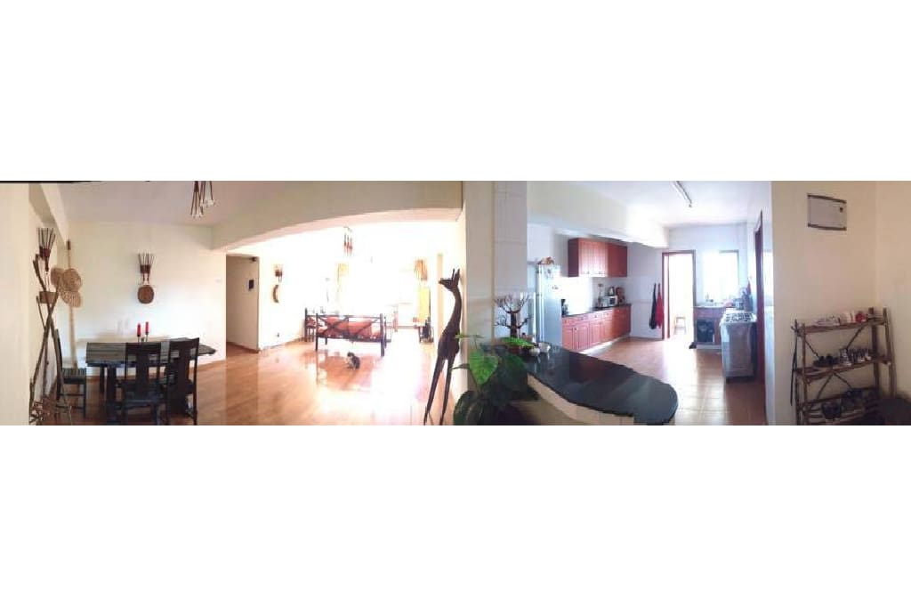The common space: Dining room, living room, kitchen and balcony.
