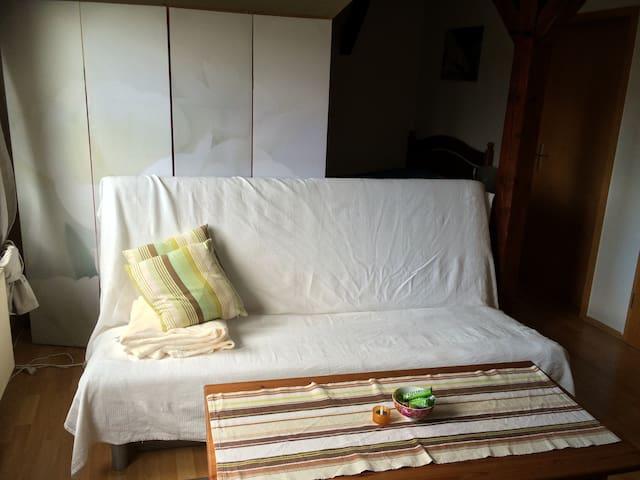 Möblierte helle 1-Zimmerwohnung - Lehrte - Pis