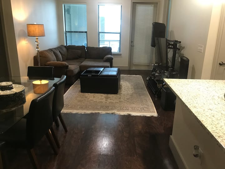 Great two bedroom apartment downtown Houston