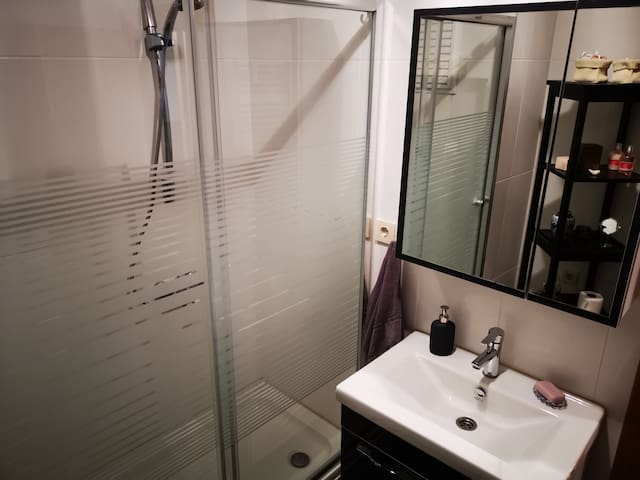 First bathroom's showe