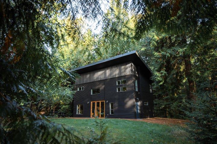 Ralstin House: A Modern Home on Guemes Island, WA
