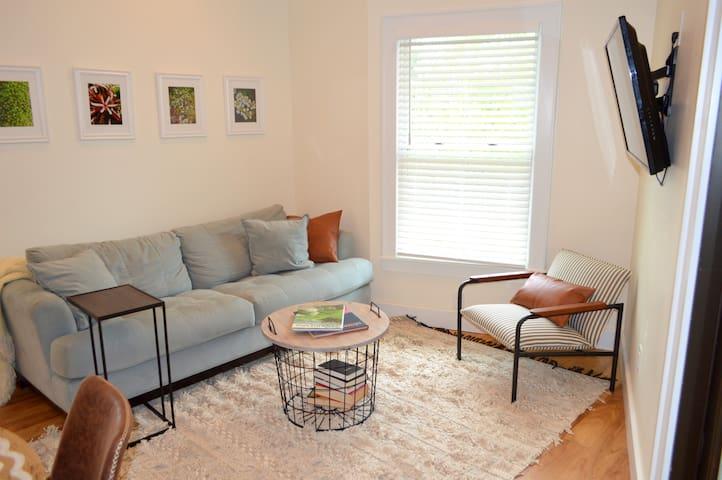 Living room with sleeping sofa