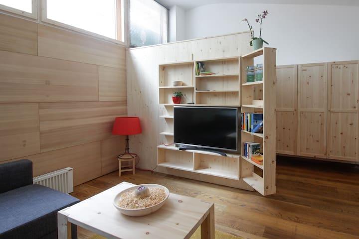 TV mit NETFLIX