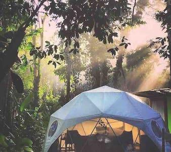 Agua Faith Glamping Dome Costa Rica