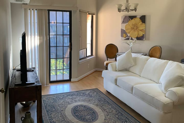 Adorable Alexandria Condo