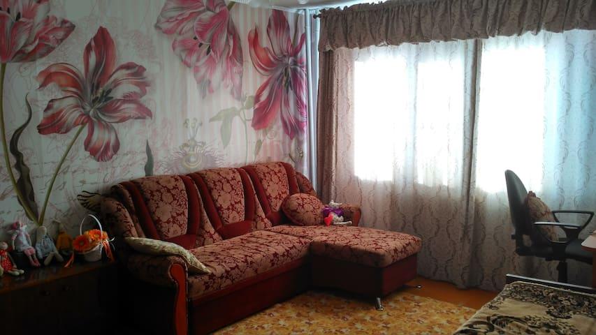 Уютная квартира в деревянном доме - Kargopol' - Pis
