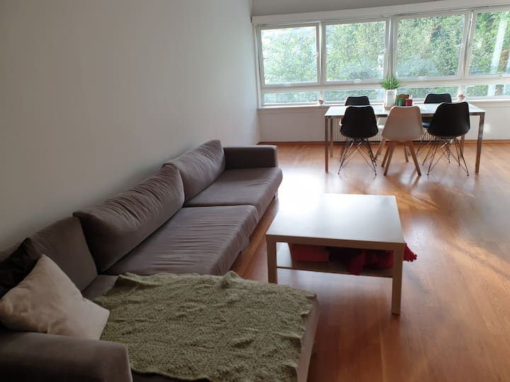 Frogner single room
