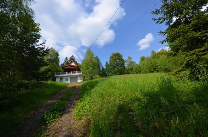 domek w górach- lasy, jezioro, szlaki, skałki - Łysina - Alpstuga