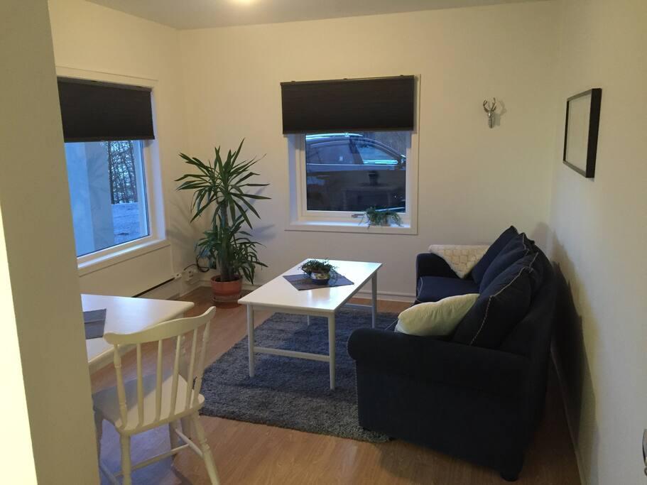 Koselig stue med store vindu som gir mye lys og flott utsikt