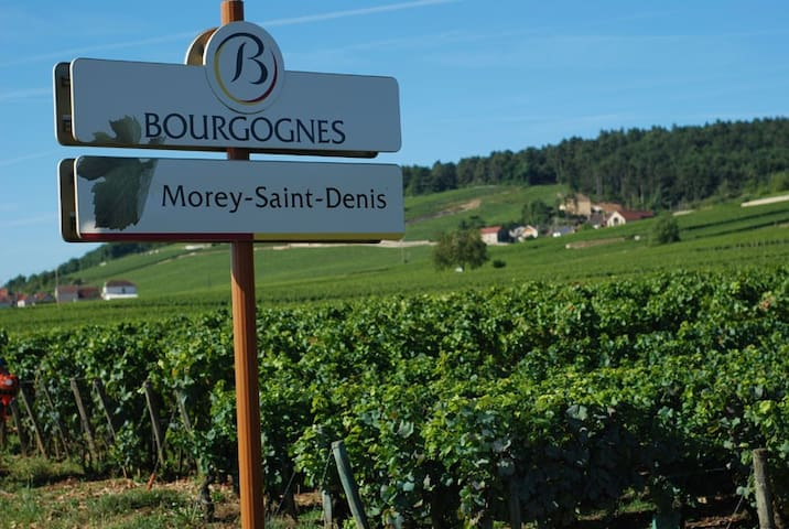 Chambre Vue sur Vignoble ancien Domaine viticole - Morey-Saint-Denis - Dům