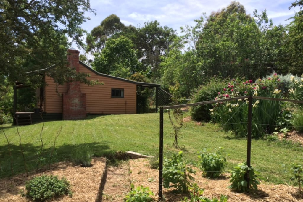 South face of Argie Cottage from the adjacent house veggie patch. Plenty of space between dwellings for your privacy.