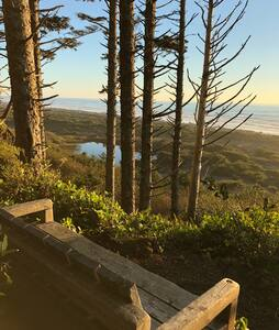 Oceanfront Olympic Cabin— Secluded & Vast  (2BR)