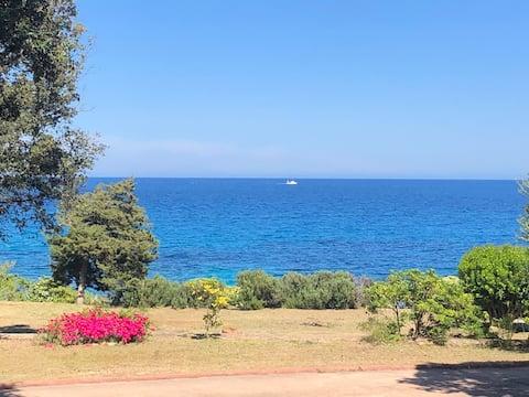 La mer a 100 m de la terrasse vue splendide