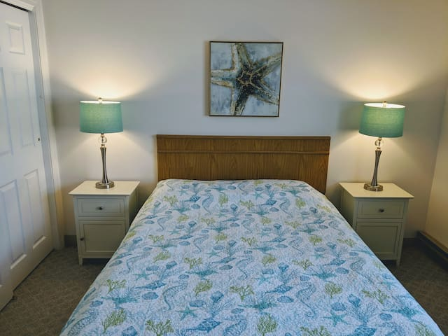 Newly remodeled bedroom with queen bed
