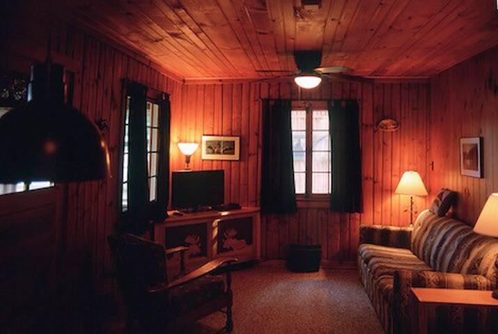 Little St. Germain 2-bedroom Lakeside Cabin!