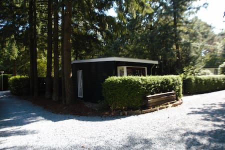 Ruim gelegen chalet - Hattemerbroek - Cabin