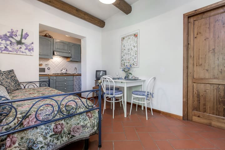 """PRATO"" charming apartment with Pool (Florence)"