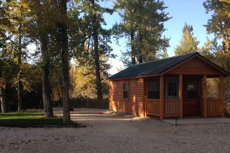 Castaway Cabins #4, near Red Lodge, MT