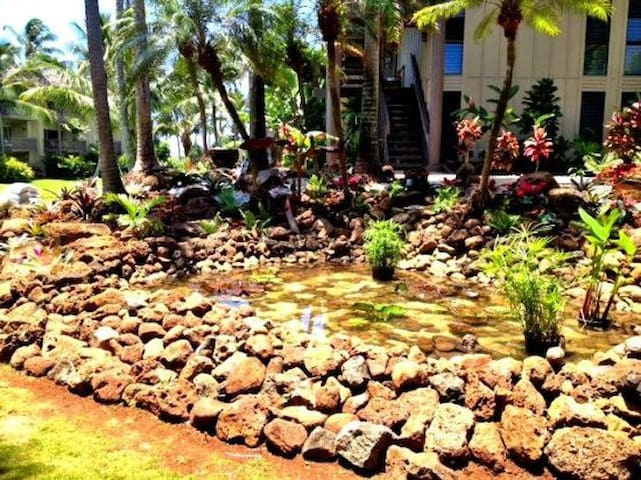 Beachfront, ground floor, renovated, accessible and convenient, close to the pool