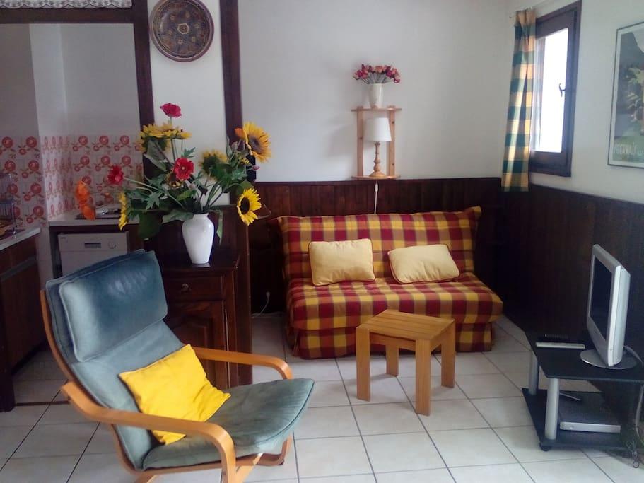 Le salon avec canapé