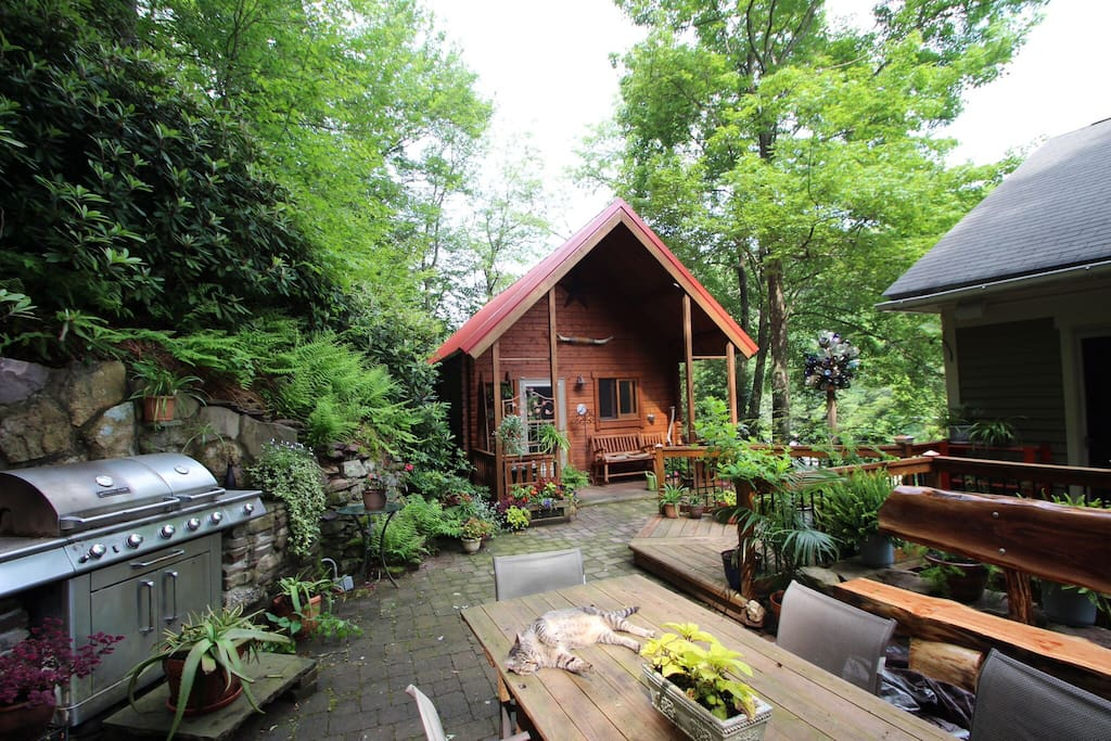 cabin in the trees in historic jim thorpe cabins for