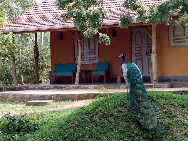 Taragala Place (2 room) family Chalet No. 1