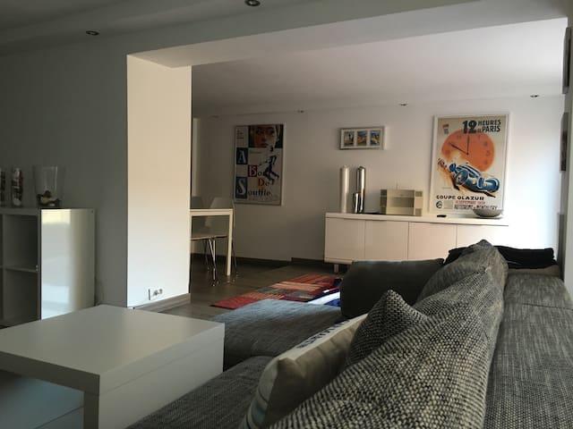 Monaco large Apartment duplex