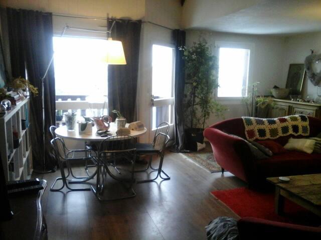 Duplex familial 125 m2 face au mont blanc - Sallanches - Daire