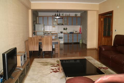 Spacious and cozy apartment in the heart of UB.