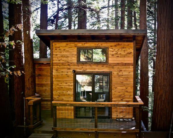 Modern Redwood Treehouse +2 MontereyAquariumPasses