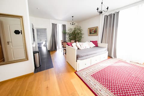 Lovely Apt. at the Heart of Montreux for 6 People!