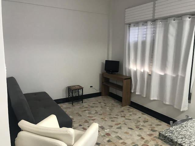 Sala Com ventilador de Teto e TV.