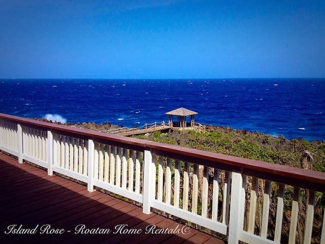 Spacious Ocean Front Home, Pool, Walk to the beach