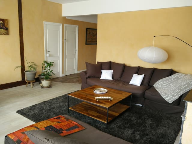 Chambre meublée en centre ville - VILLEFRANCHE SUR SAONE - Apartment