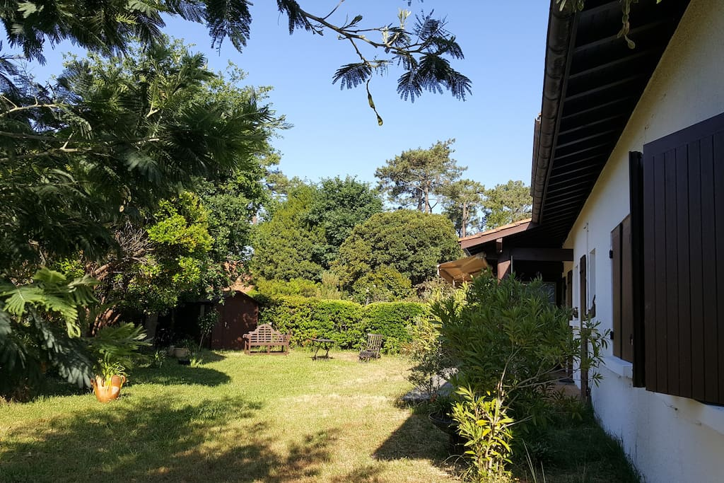 Jardin arrière Sud