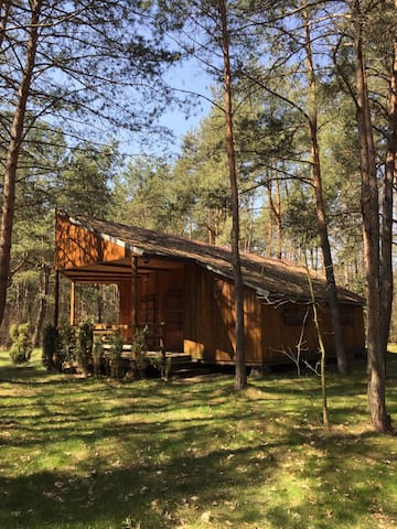 Country House in the forest - 1h from Warsaw