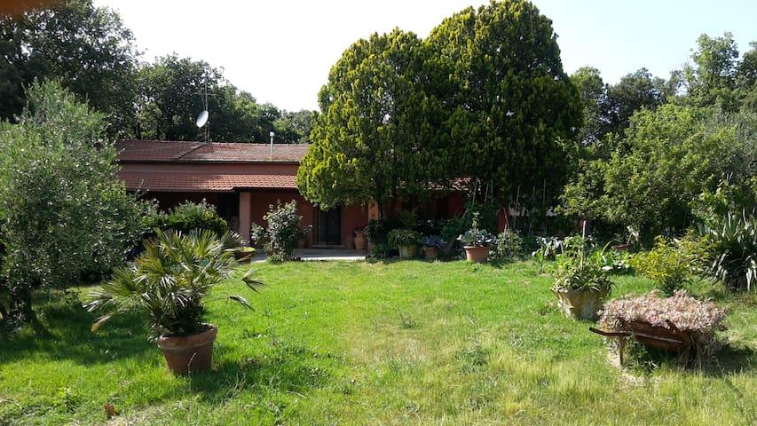 Bilocale in casa di campagna - Rosignano marittimo - Byt