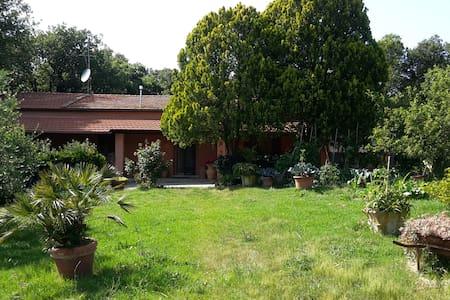 Bilocale in casa di campagna - Rosignano marittimo