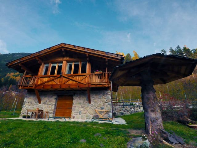Chalet in Livo ID 242