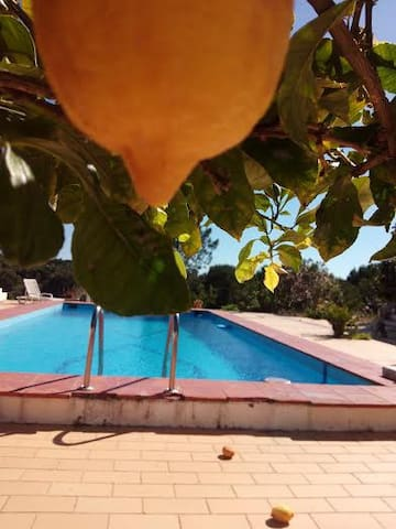 Vale Badoka Charming Cottage for relaxing holidays - Santiago do Cacém Municipality - House