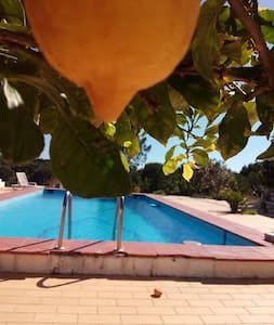 Vale Badoka Charming Cottage for relaxing holidays - Santiago do Cacém Municipality - Ev