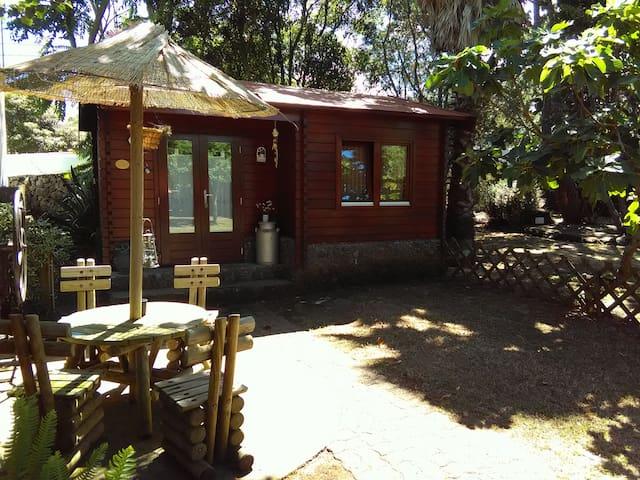 Vilar dos Carvalhinhos - Eco-Cabana 2