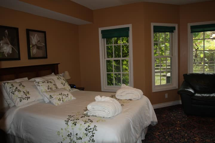 Willow Trace B&B by Elevate Rooms - Joshua Queen Room