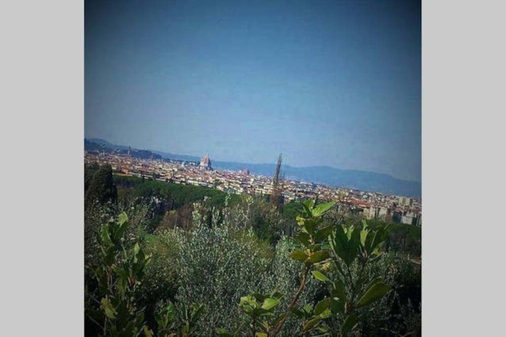 View of Florence from Settignano