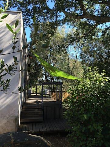 Maison entre plages et maquis - Sotta