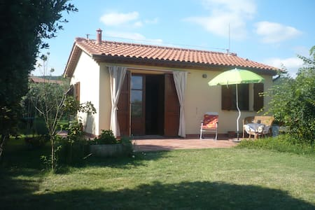 Bungalow in olive tree garden 12 km from the sea - Riparbella (Pisa) - Bungalow