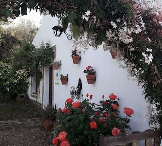 Casa Rural La Piña