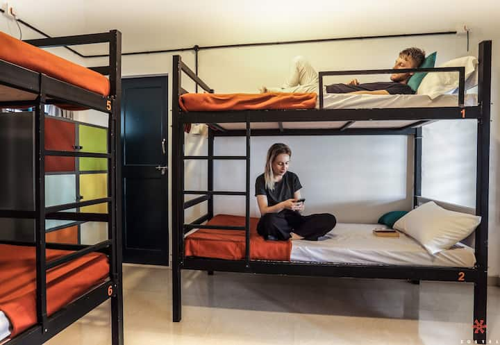 A Bed in 6 Bed Mixed dorm in Alleppey