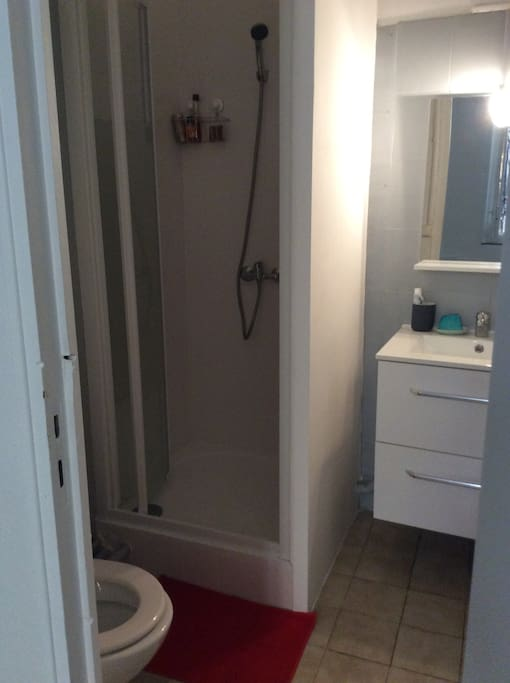 Salle de bain douche, lavabo, WC